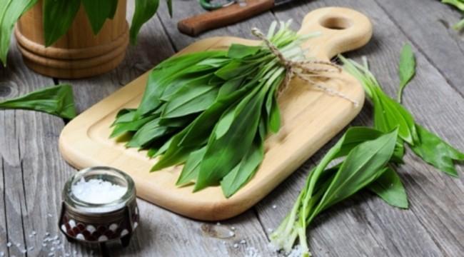 Leurda – planta miracol a primăverii; efecte benefice pentru sănătate.