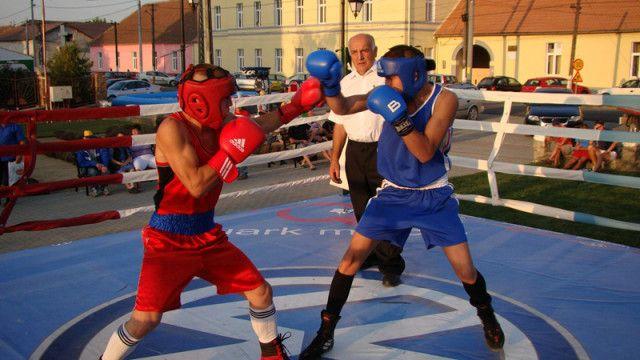Aur pentru Boxerii Lugojeni la Arad