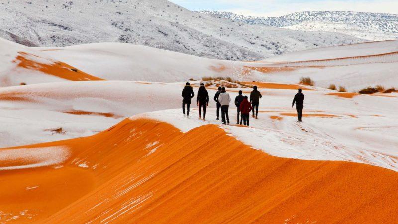 A nins în deșert. Fenomen meteo extrem în Arabia Saudită