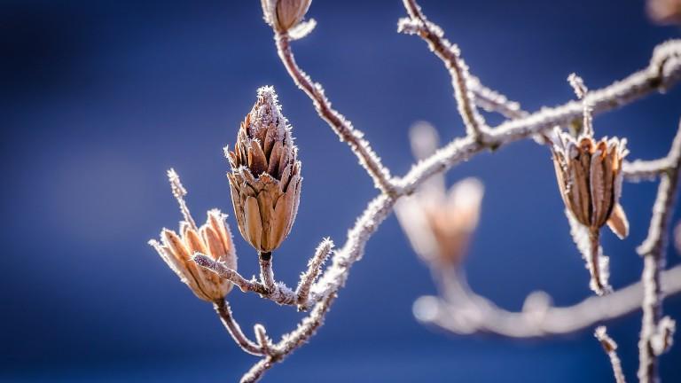 Vreme rece la început de săptămână în Banat, geroasă dimineața și noaptea