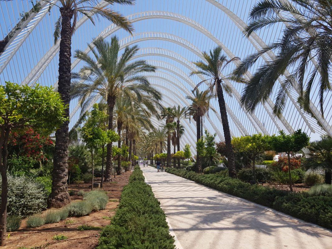 Zboară la Valencia de pe Aeroportul Internaţional Timişoara. Viziteaza cele mai frumoase oraşe din Spania!