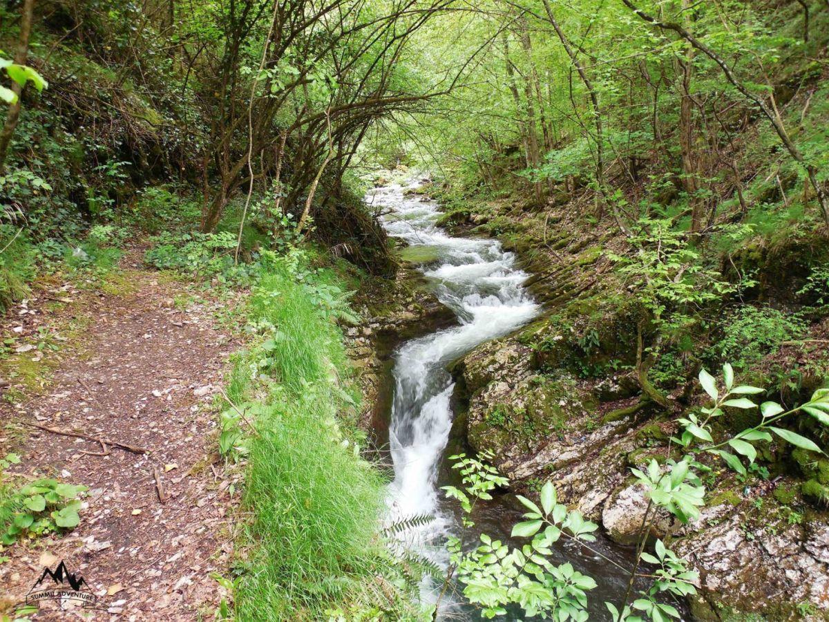 Una dintre cele mai sălbatice rezervații naturale din România se află în Banat