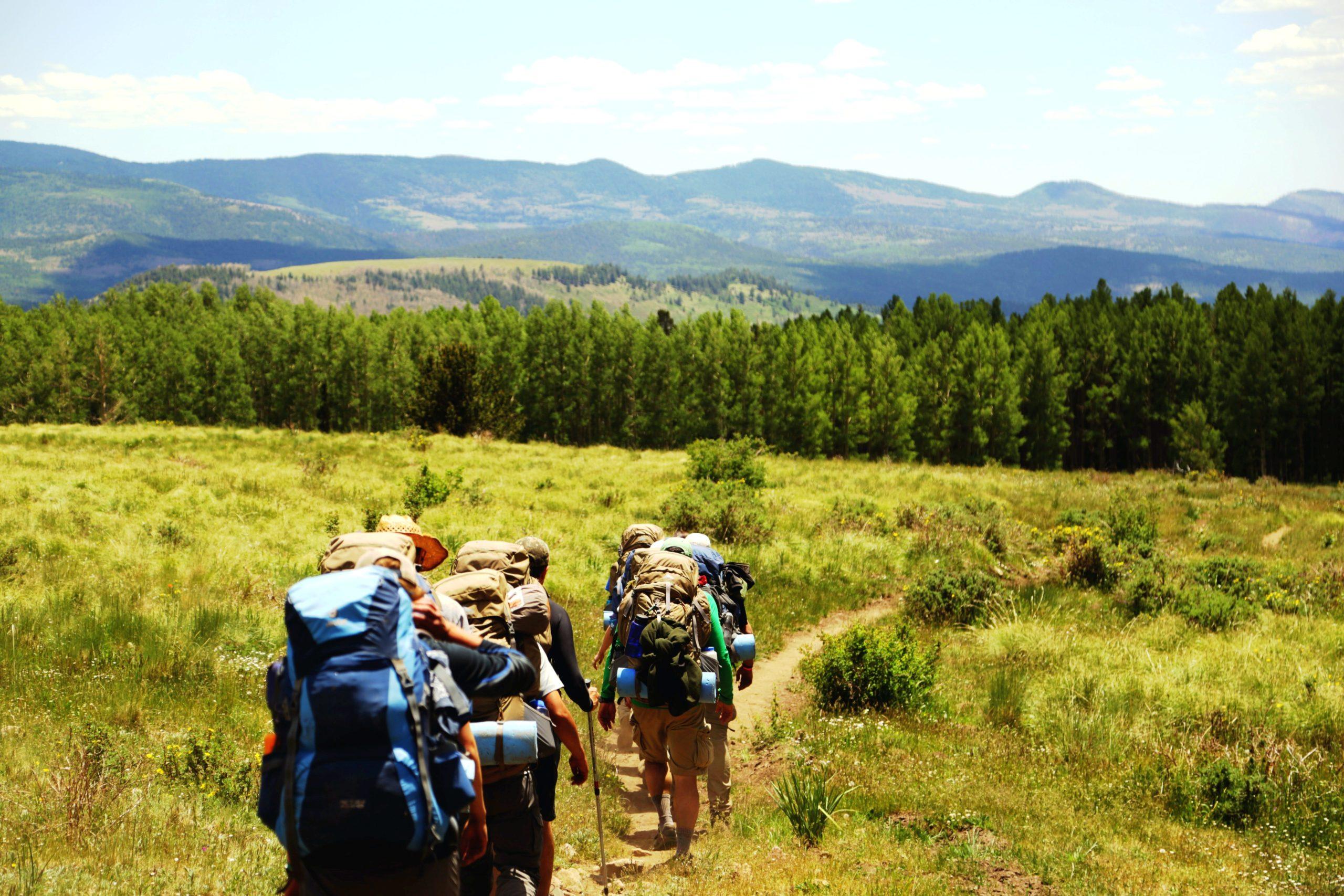 Visați la drumeţii de vară, în aerul curat al pădurilor. Satele din Ţara Făgetului vă aşteaptă