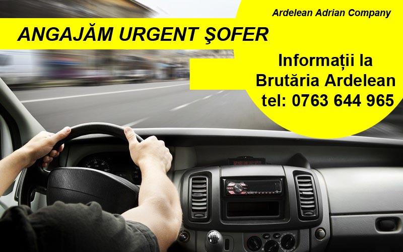 S.C. Ardelean Adrian Company ANGAJEAZĂ URGENT ŞOFER pentru distribuție marfă în Lugoj