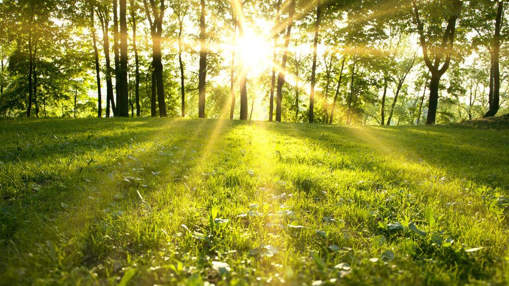 Vreme caldă în Banat, temperaturile între 27 și 32 de grade.